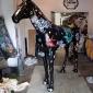 baz-the-horse-14