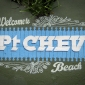 ptchev-1